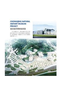 重庆自然博物馆项目
